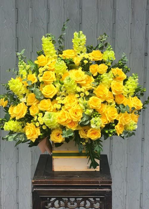 Hộp hoa hồng vàng nhập