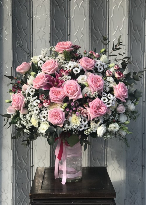 Hoa hồng Ohara Hà Lan