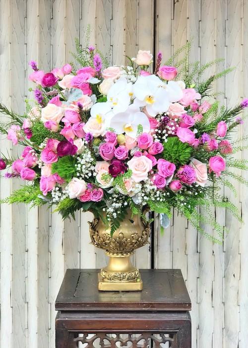 Chậu hoa hồng và hoa lan hồ điệp